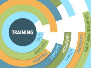 Leiderschap: Aangeleerd of natuurlijk talent? Personal & Business Improvement