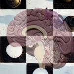 Hoe zit het met jouw hersenen? Personal & Business Improvement