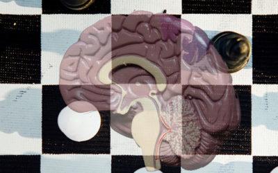 Hoe zit het met jouw hersenen?